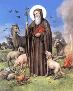 Lode a tutto il Creato da Sant'Antonio Abate